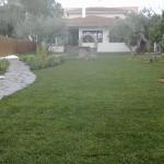 Jardin despues de los servicios profesionales de jardineria de Serlingo. Trabajos realizados