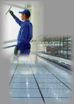 Empresas de limpieza torrejon de ardoz for Oficina de empleo de torrejon de ardoz