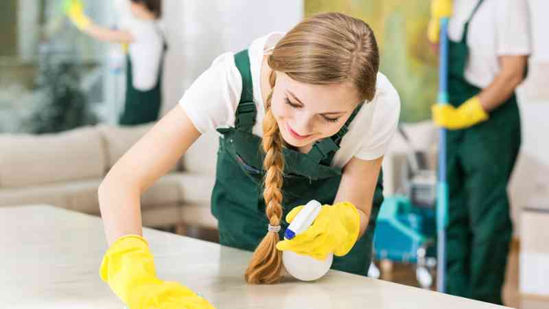 profesionales de la limpieza