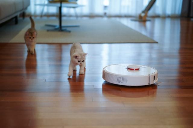 aspirador-limpieza-robot-gatos-serlingo